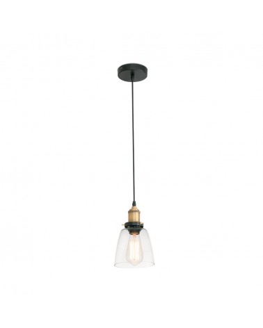 LIZ-2 Transparent pendant lamp